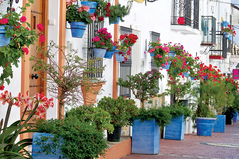 A display of flowers in the town at Estepona